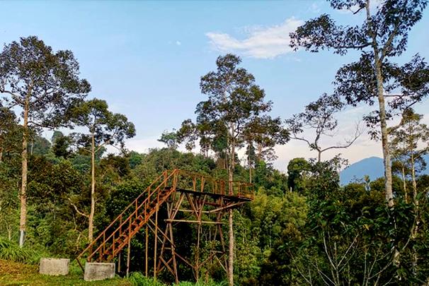 Janda_baik_Laman Tahza_campsite_malaysia_car_camping_16
