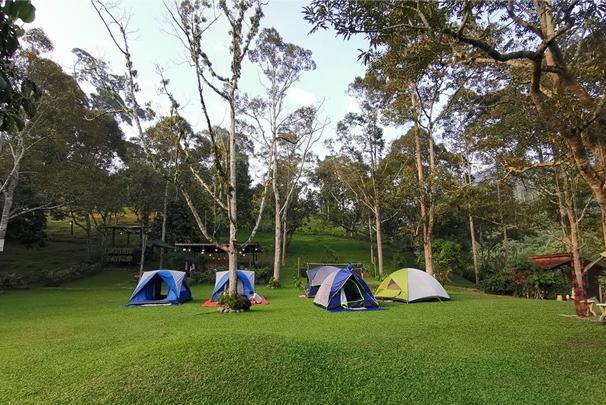 janda baik camping site