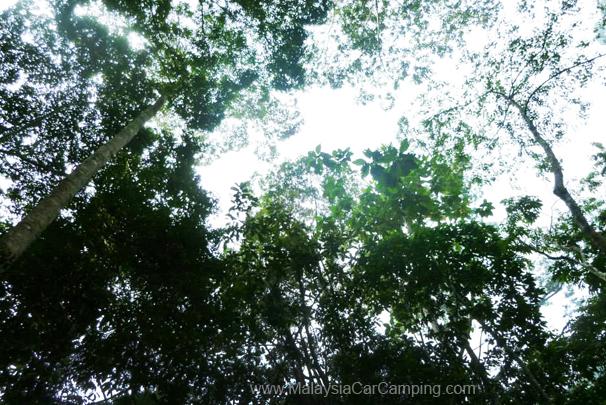 sungai_congkak-campsite-malaysia-car-camping-7