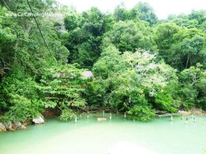 teluk-bahang-taman-negara-penang-car-camping-malaysia-51