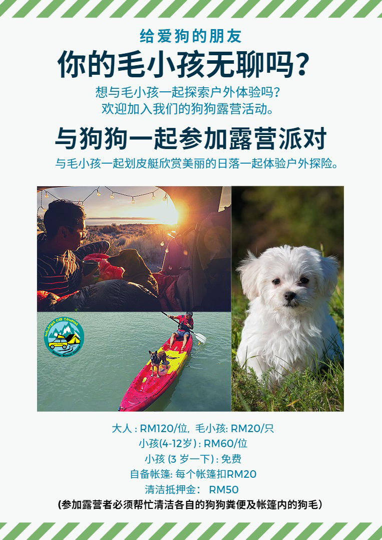 狗狗露营——puppy_dog_camping_malaysia_car_camping_mcc_outdoor_leaflet-