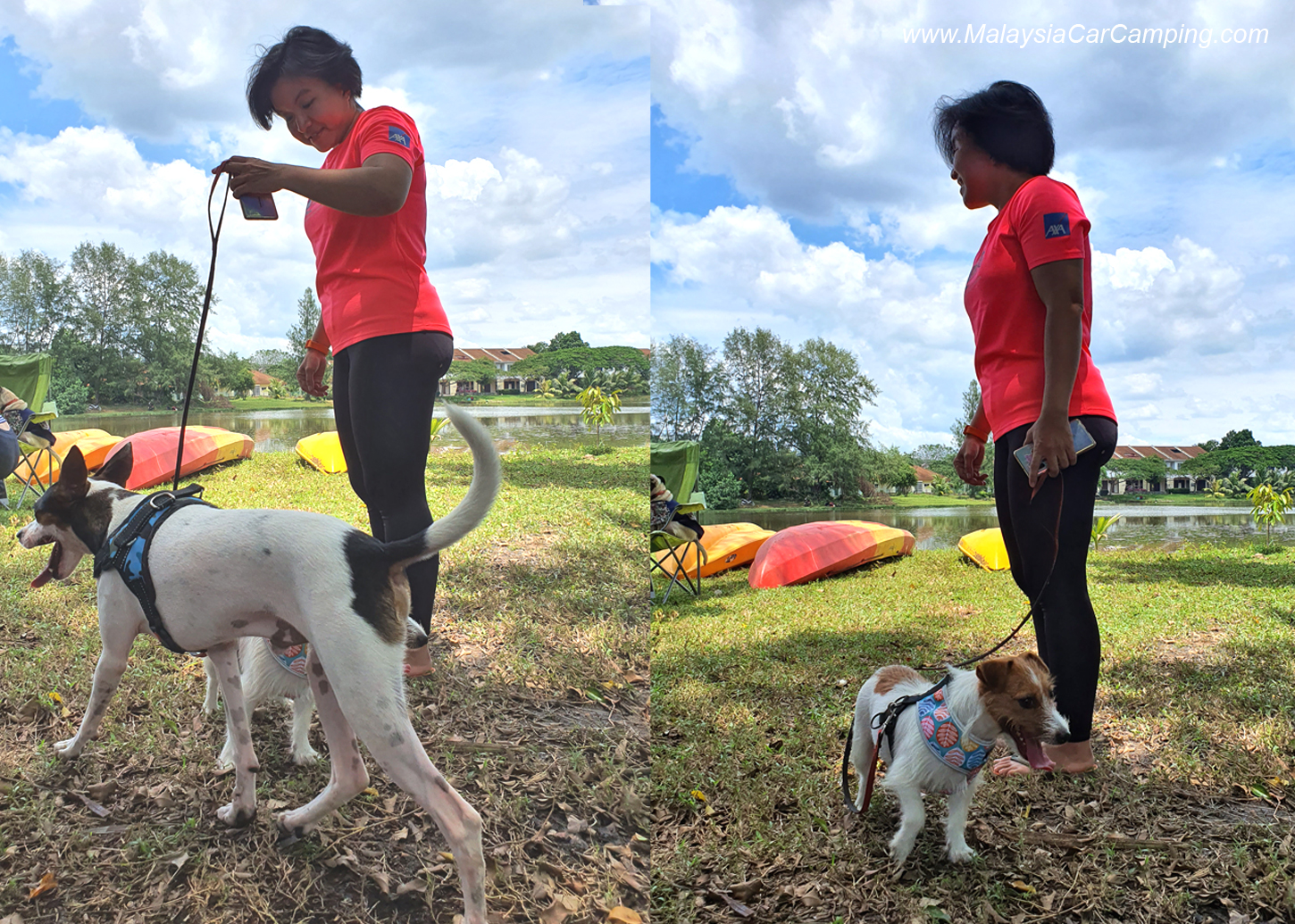 camping_with_dogs_puppy_lakeside_camping_malaysia_car_camping_malaysia_campsite-10