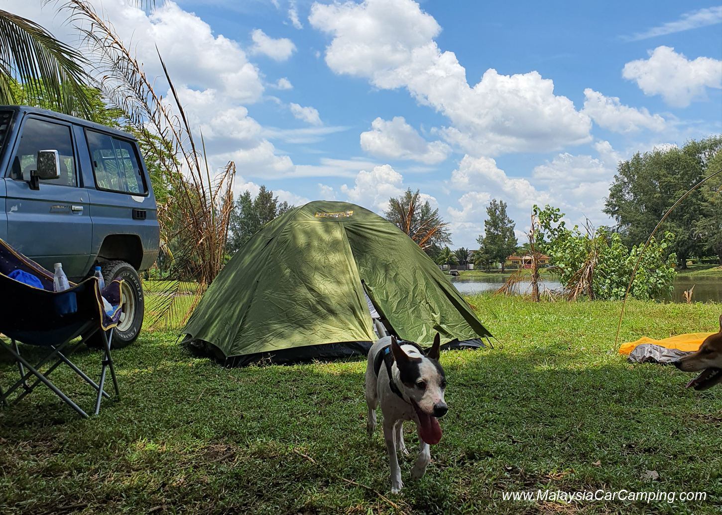 camping_with_dogs_puppy_lakeside_camping_malaysia_car_camping_malaysia_campsite-12