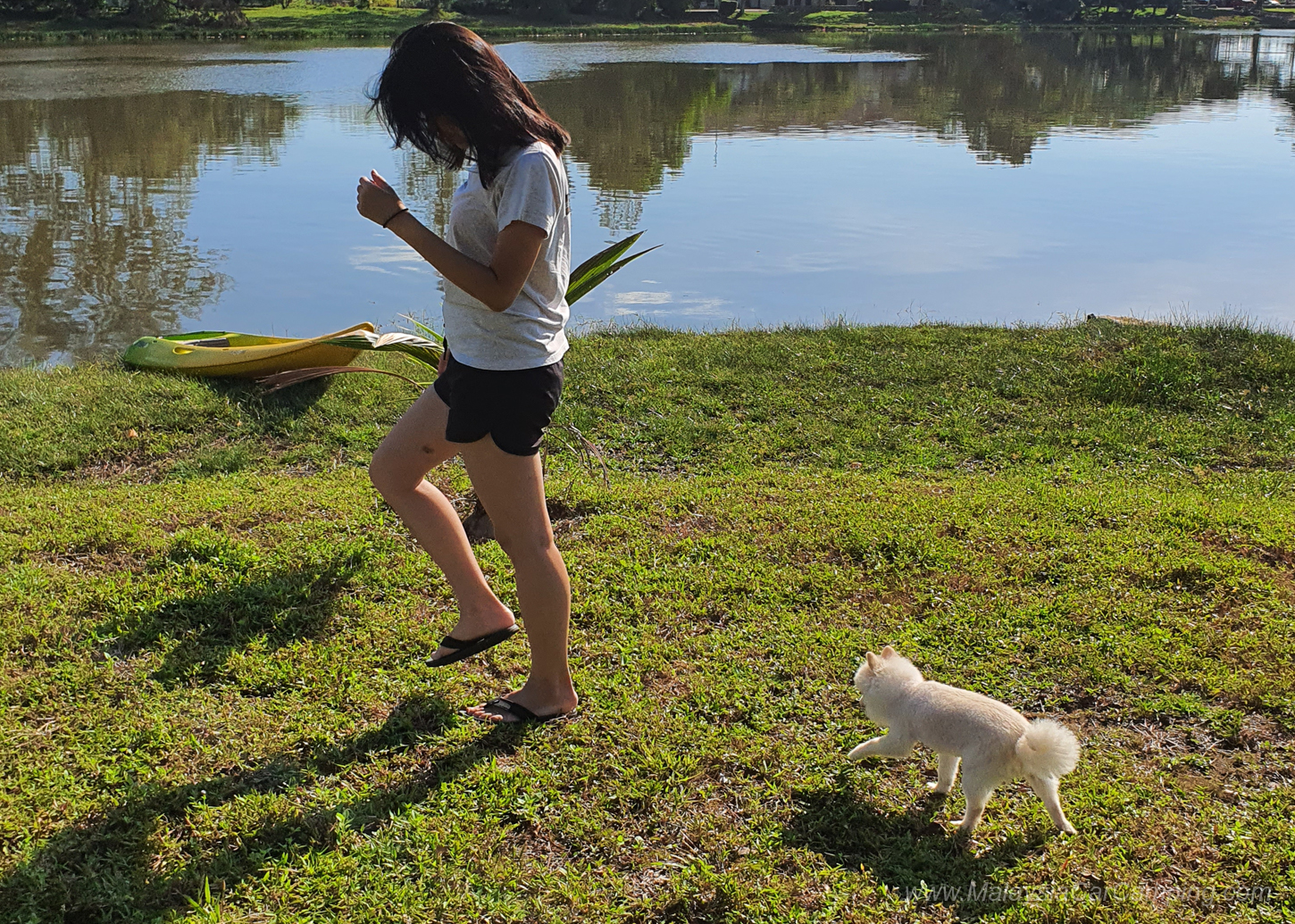 camping_with_dogs_puppy_lakeside_camping_malaysia_car_camping_malaysia_campsite-21