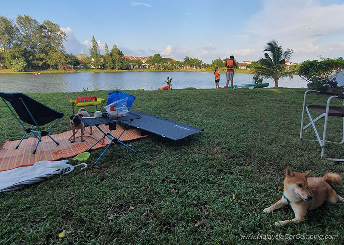 camping_with_dogs_puppy_lakeside_camping_malaysia_car_camping_malaysia_campsite-23