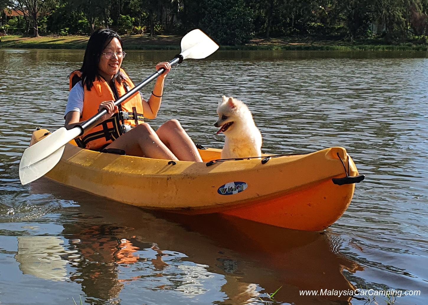 kayak_with_dogs_camping_with_dogs_puppy_lakeside_camping_malaysia_car_camping_malaysia_campsite-8