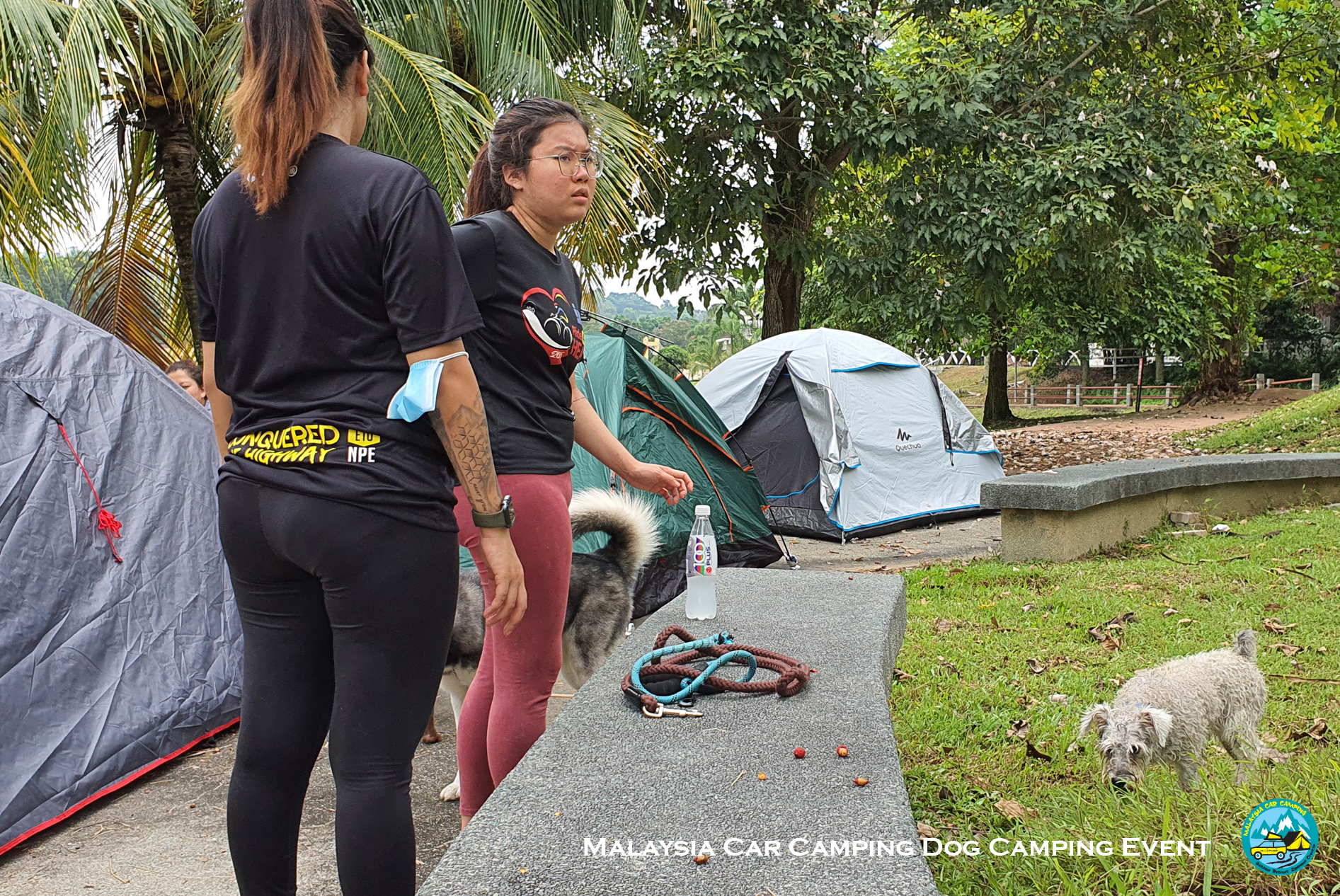 dog_camping_event_dog_lover_selangor_camping_site_malaysia_car_camping_private_event_organizer-4