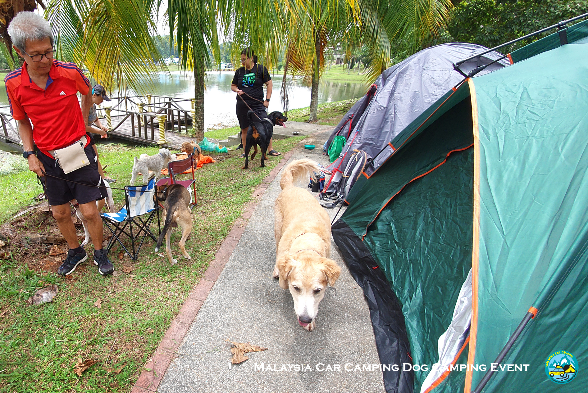 dog_camping_event_dog_lover_selangor_camping_site_malaysia_car_camping_private_event_organizer-7
