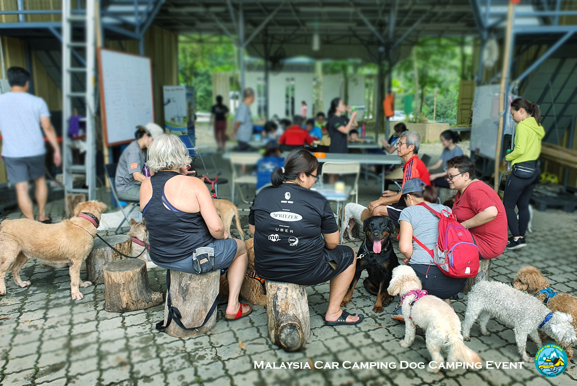 dog_camping_event_dog_lover_selangor_camping_site_malaysia_car_camping_private_event_organizer-8