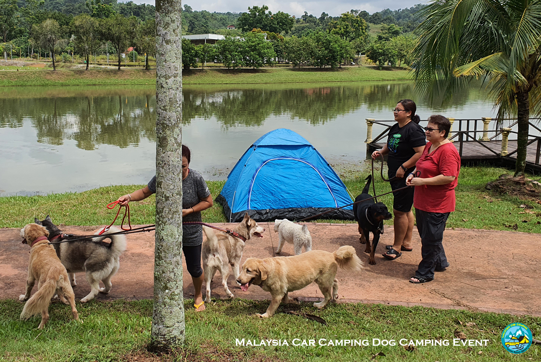 dog_camping_event_selangor_camping_site_malaysia_car_camping_private_event_organizer-3