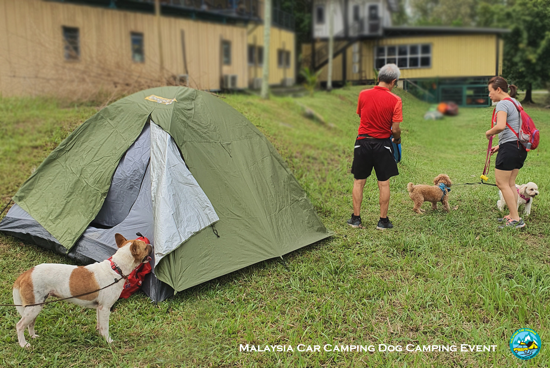 dog_camping_event_selangor_camping_site_malaysia_car_camping_private_event_organizer