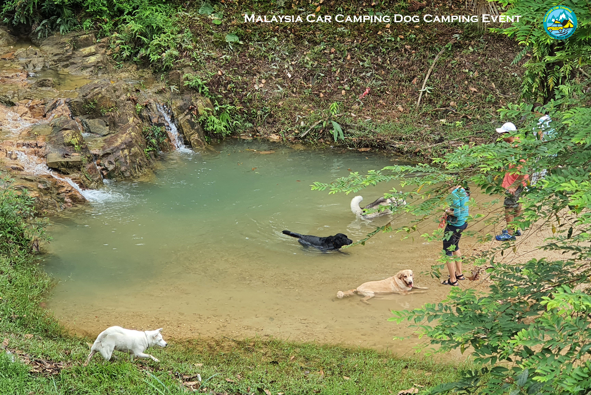 hiking_with_dog_malaysia_dog_camping_event_selangor_camping_site_malaysia_car_camping_private_event_organizer-2