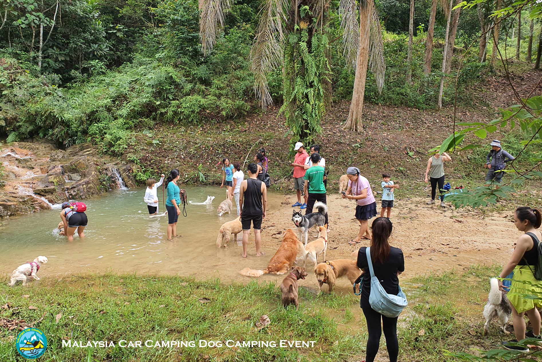 hiking_with_dog_malaysia_dog_camping_event_selangor_camping_site_malaysia_car_camping_private_event_organizer-3
