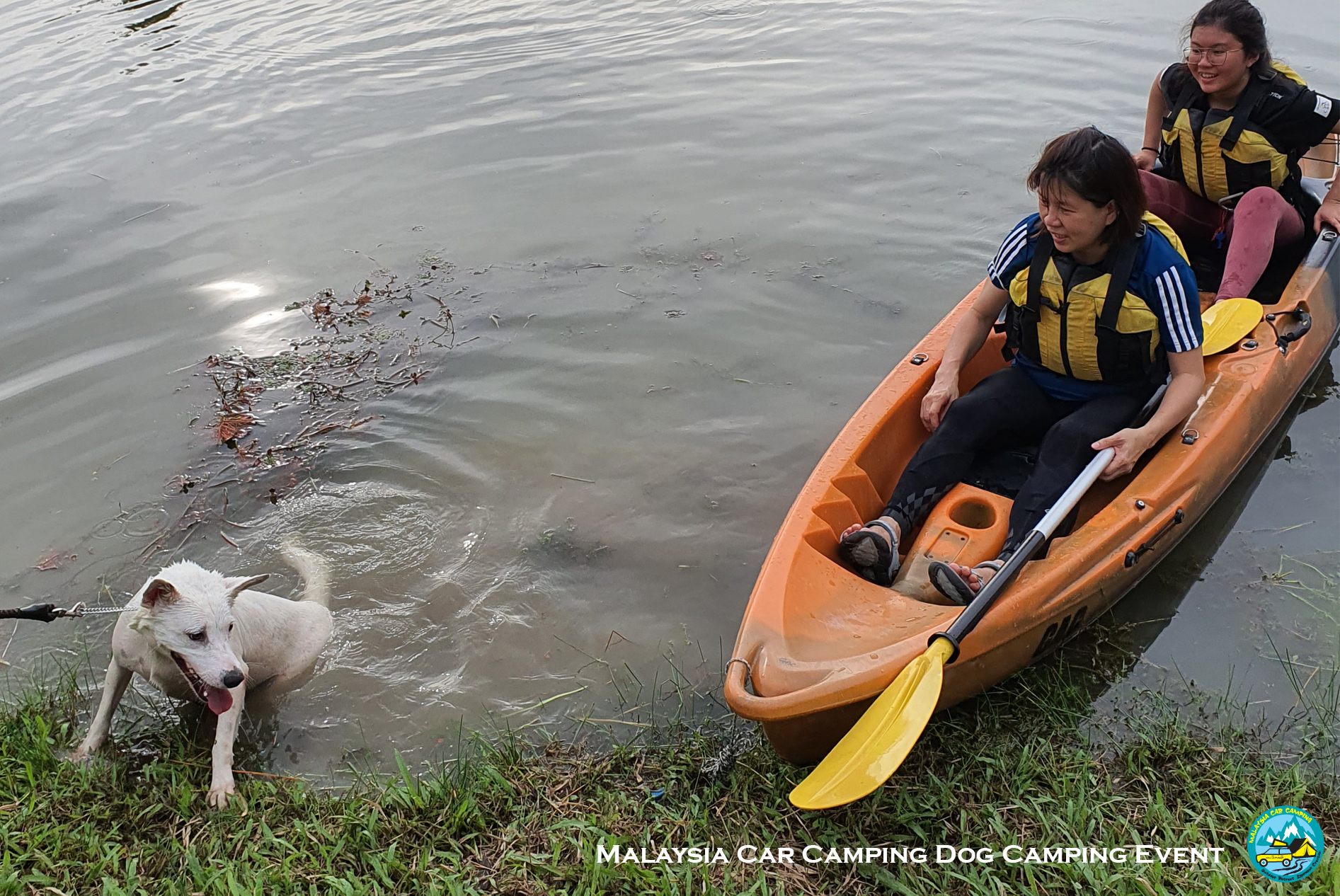 kayaking_dog_dog_camping_event_selangor_camping_site_malaysia_car_camping_private_event_organizer-5